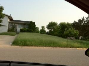 Long grass better